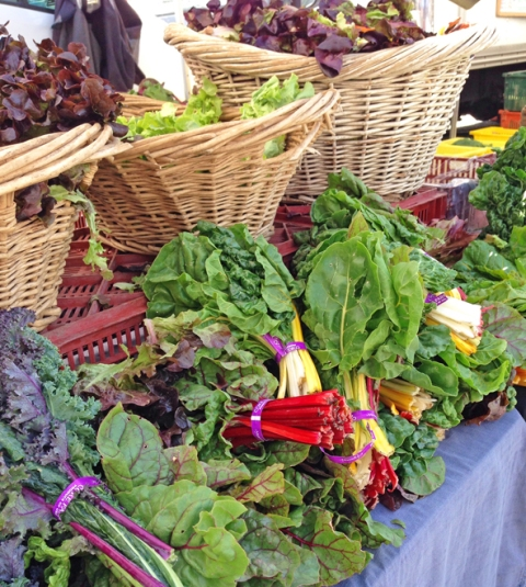 Colorful organic greens from Full Belly Farms