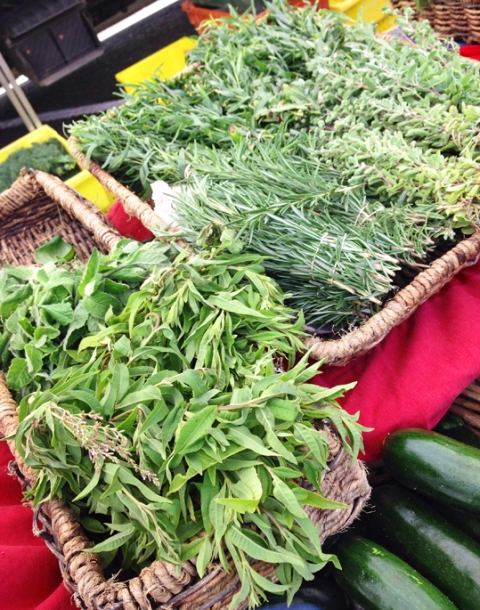Fresh herbs from Full Belly Farms