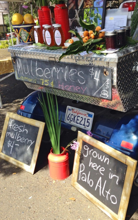 The Mulberry Guy: locally grown mulberries (as in: a mile from the market)