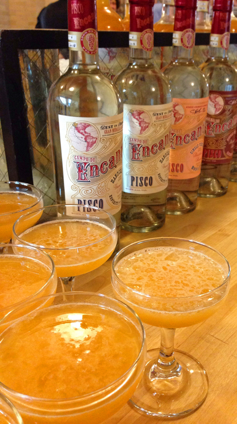 Pisco Apricot Tropical, made with Campo de Encanto Pisco and Frog Hollow apricots (Greg Linden: Rye on the Road)