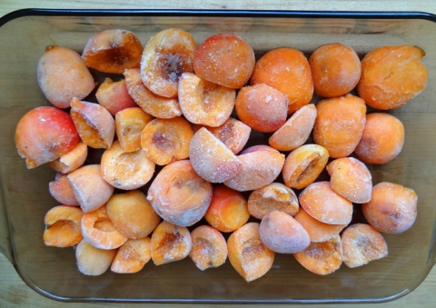 Frozen apricots thawing