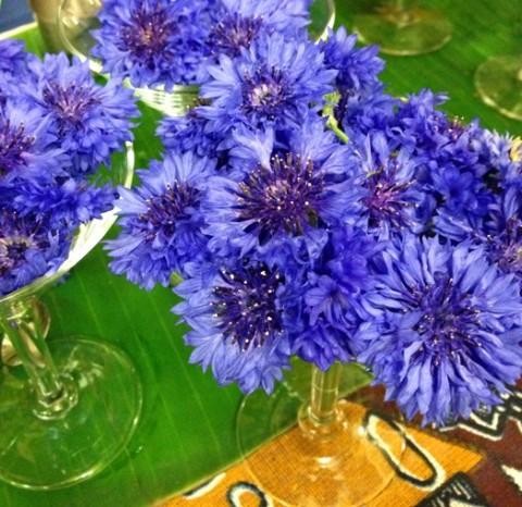 rusty-blade-flowers