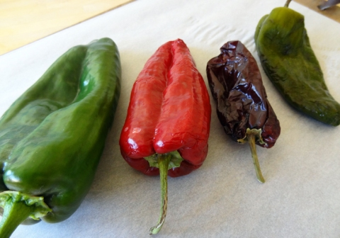Ancho chiles: fresh, mature and drying, completely dried, roasted and peeled