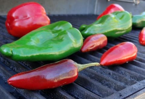 Fresh and shiny peppers on the grill