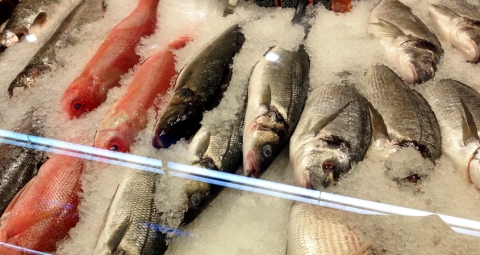 Whole fish in the case