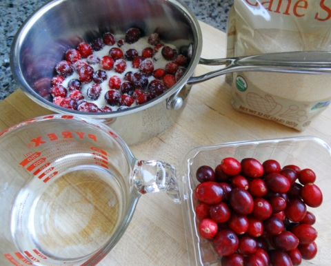 Three ingredients for cranberry syrup: cranberries (natch!), cane sugar, and filtered water