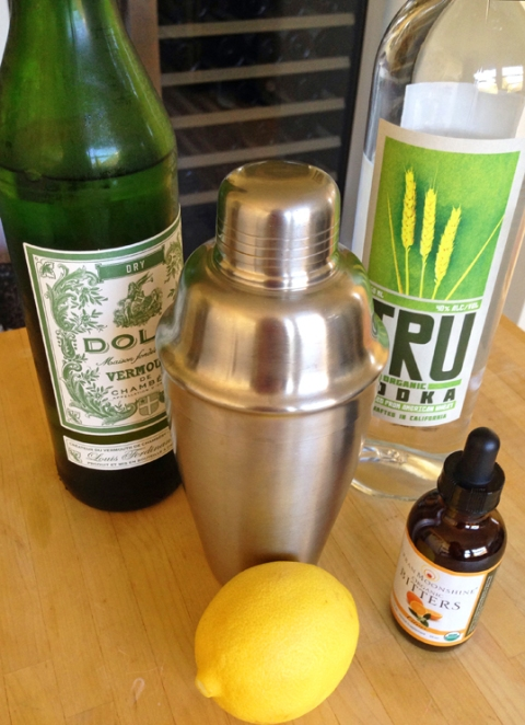 Ridin' the Storm Out Martini, shaken not stirred: Dolin Dry Vermouth, TRU Organic Vodka, citrus bitters, lemon