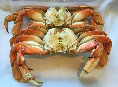 Holiday Dungeness: cleaned, but not cracked... weighing in at 2.25 pounds each