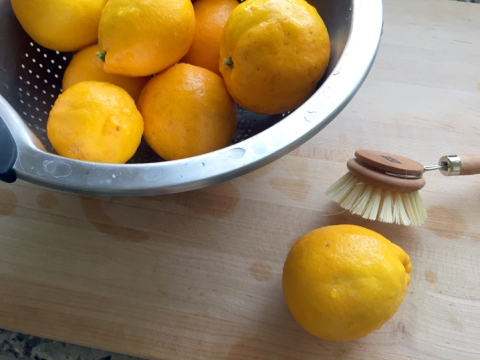 Tip: keep a small scrub brush handy for cleaning citrus skins