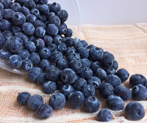 Fresh blueberries from the San Joaquin valley