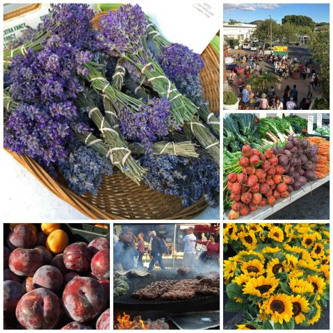 Thursday Night Farmers' Market in San Luis Obispo