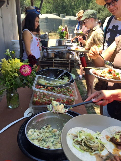 What's for lunch: farm-fresh slaw, potato salad and tacos (chicken, beef, or veggie)